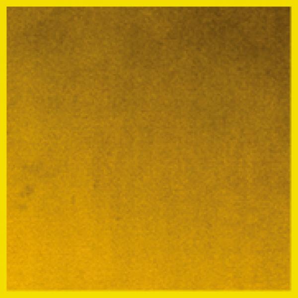 Velvet | Mustard  +