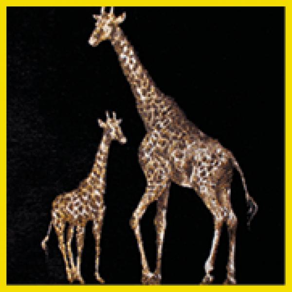 Serengeti | Giraff  +