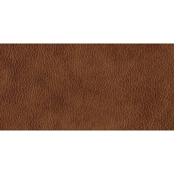 Leather - Dallas Tan N833.jpg  +