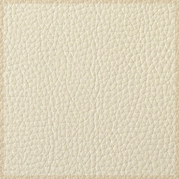 Ice-White-with-Parchment-Trim  +