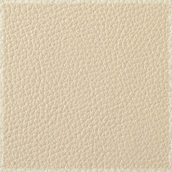 Parchment-with-Ice-White-Trim  +