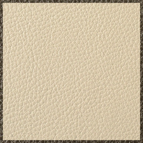 Parchment-with-Squirrel-Grey-Trim  +