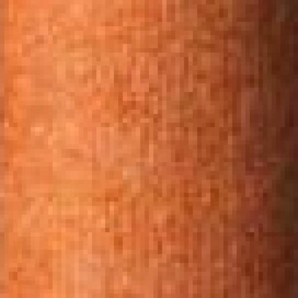 Calido-Orange  +
