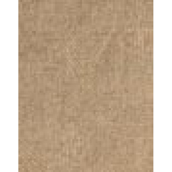 Toulouse Sandstone  +